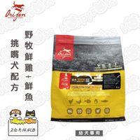 Orijen渴望 挑嘴犬配方 狗飼料 幼犬專用 野牧鮮雞+鮮魚 2公斤/4.4LB*1包