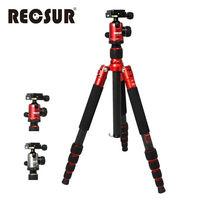 RECSUR RS-3255C+VQ-20 五節反折式碳纖維腳架-台腳五號