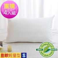 LooCa法國Greenfirst防蹣防蚊枕-輕量型《四入組》
