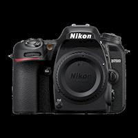 NIKON 尼康 D7500 單眼相機 單機身 (國祥公司貨)
