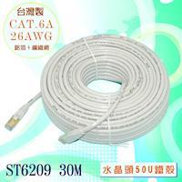 fujiei 台灣製CAT.6A 超高速傳輸網路線30米