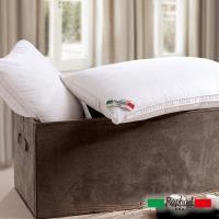 Raphael拉斐爾 五星級飯店專用 羽絲絨枕(2入)