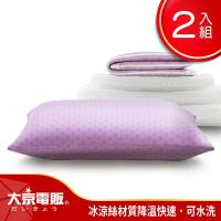 日本大京電販  4D防螨涼感枕超值2入組