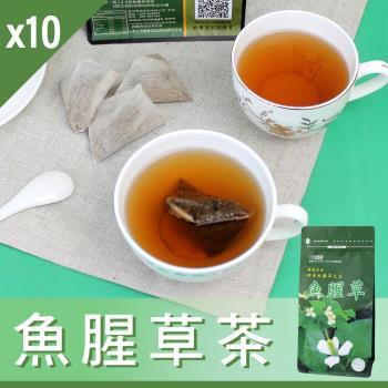 【Mr.Teago】魚腥草茶/養生茶/養生飲-3角立體茶包-10袋/組(30包/袋)