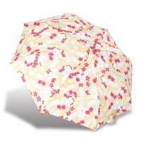 RAINSTORY雨傘-繽紛花漾抗UV加大自動傘