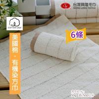 美國棉*有機染大方巾 (6條裝)  ~.~台灣興隆毛巾製~.~無染系列