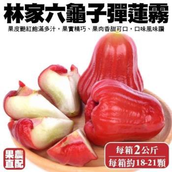 果農直配-六龜子彈蓮霧小顆1箱(18-21入/2kg/箱)