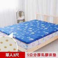 米夢家居- 夢想家園-冬夏兩用馬來西亞進口100%天然乳膠床墊-5公分厚-單人3尺