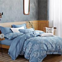 幸運草-藍秋谷 萊賽爾吸濕排汗親膚天絲加大八件式床罩組-獨立筒適用