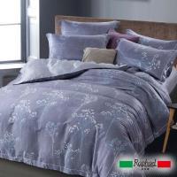 Raphael拉斐爾 優雅 天絲加大四件式床包兩用被套組