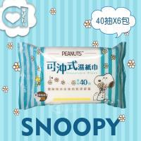 SNOOPY 史努比可沖式濕紙巾40抽x6包