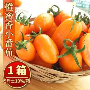 美濃宋媽媽超人氣橙蜜香小番茄禮盒(5斤±10%/盒) x1盒