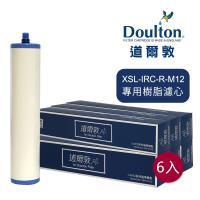 DOULTON英國道爾敦 XSL-IRC-R-M12 櫥下濾水器專用樹脂濾芯 - 六入組▲新螺牙專用
