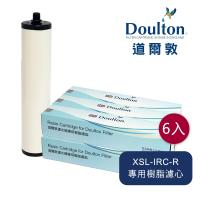 DOULTON英國道爾敦 XSL-IRC-R 美國陶氏DOW樹脂濾芯 - 六入組▲舊螺牙專用