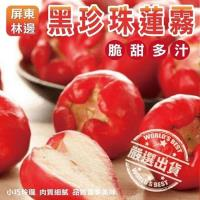 果物樂園-頂級林邊黑珍珠蓮霧禮盒(11~13顆入/約2kg±10%)