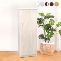 Bernice-防潮防蛀 防水塑鋼1.5尺單門鞋櫃(五色可選)