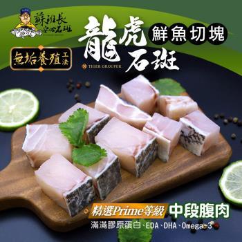 蘇班長安心石斑 龍虎石斑鮮魚切塊500g 3入組 歐盟食安標準 得獎最多的石斑(龍虎石斑 龍膽石斑 永安石斑)