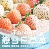 築地一番鮮-台灣獨特-戀雪三色白草莓2箱(500G/箱)