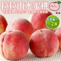 果物樂園-拉拉山五月水蜜桃6入(2盒/每盒約1.3kg±10%含盒重)