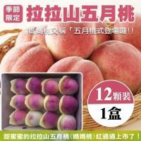 果物樂園-拉拉山五月水蜜桃12入(1盒/每盒約1.3kg±10%含盒重)