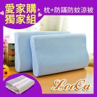 LooCa 日本大和防蹣抗菌工學記憶枕2入+防蹣防蚊四季被 5X6尺 1入多款任選