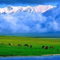 清艙-北疆禾木村喀納斯巴音布魯克12日(無購物無自費)旅遊