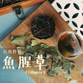 日常野草 靜心明朗 魚腥草青草茶(5gX10包/盒)