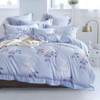 DON 加大吸濕排汗天絲兩用被床包組+贈床包枕套三件組(隨機)-型(網)