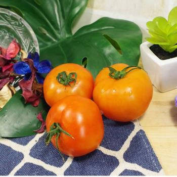 牛番茄 300公克±10