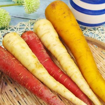 「有機」彩色胡蘿蔔(采園認證)(300公克±10%)