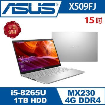 ASUS華碩 X509FJ-0131S8265U 輕薄筆電 冰河銀 15吋/i5-8265U/4G/1T/MX230/W10