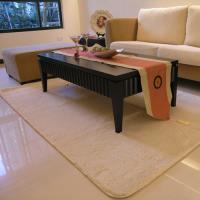 范登伯格-貝琪 日本原裝進口防蹣抗菌地毯/地墊_200x300cm 棕色
