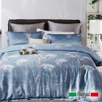 Raphael拉斐爾 悠揚 天絲雙人四件式床包兩用被套組