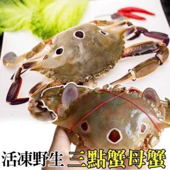 (滿10送10)海肉管家-活凍野生三點蟹-母蟹(共20隻/每隻約100g-150g)