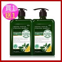 ( 雙12買1送2 )arin氧潤 高效控油洗髮精 520ml ( 贈控油520ml+精巧瓶30ml隨機款 )