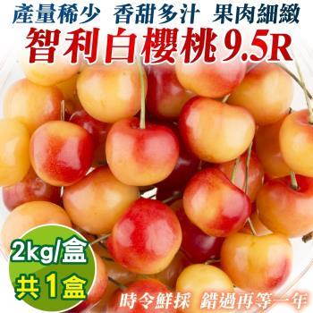 果物樂園-智利鮮採9.5R白櫻桃原裝箱(5kg±10%含盒重)