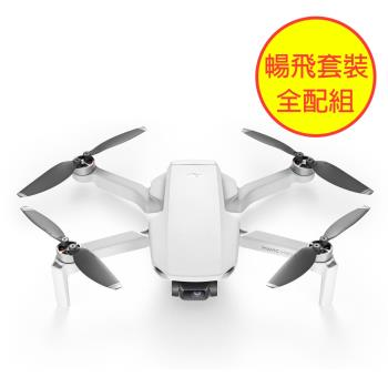 DJI 大疆 Mavic MINI 空拍機 暢飛套裝 無人機 折疊 飛機 迷你(公司貨)送128G卡+Care隨心換