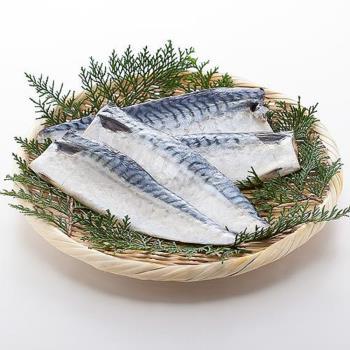 好神 【買10片送10片】深海挪威薄鹽鯖魚片-共20片