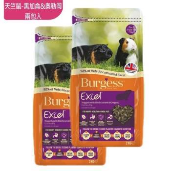 Burgess英國伯爵 - 天竺鼠飼料-黑加侖奧勒岡葉 2KG-兩包入