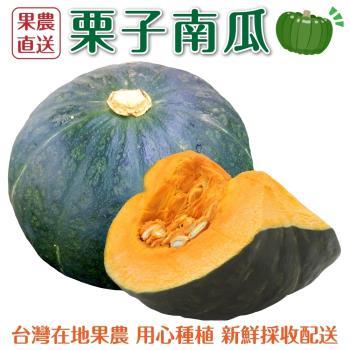 果農直配-日本品種栗子南瓜中顆(7-10顆/約20斤±10%含箱重)