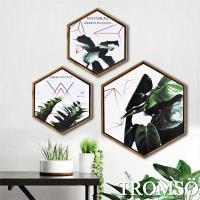 TROMSO-北歐時代風尚六角有框畫_35.3x41cm三幅一組 丹麥金綠葉