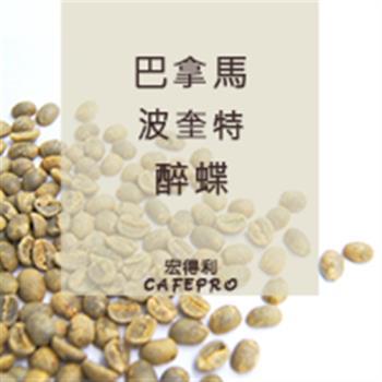 巴拿馬 波奎特 醉蝶 (水洗) (咖啡生豆)