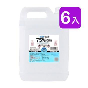 派頓潔康 75%酒精 4L (6入)