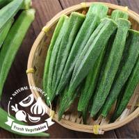 愛上新鮮 天然秋葵脆條12包(40g/包)
