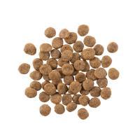 【Go!】低致敏火雞肉無穀配方 (6磅)