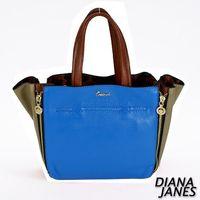 Diana Janes 牛皮 時尚袋中袋