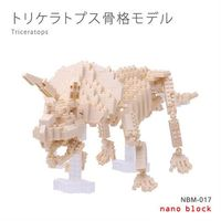 【Nanoblock 迷你積木】NBM-017 三角龍模型骨架