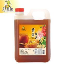 【尋蜜趣】嚴選黃金蜂蜜3000g/桶(家庭號包裝)