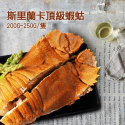築地一番鮮 斯里蘭卡頂級蝦蛄6隻(200g-250g/隻)
