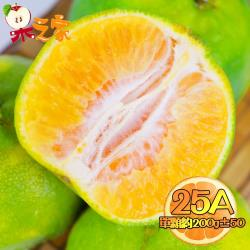果之家 嚴選台灣鮮採香甜爆汁25A綠皮椪柑12顆(單顆約200g±50)